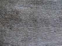 Vieille texture en bois de chêne Photographie stock libre de droits