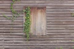 Vieille texture en bois de fenêtre de maison Images libres de droits