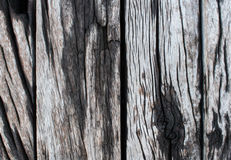Vieille texture en bois de fond Image stock