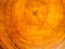 Vieille texture en bois de nature photographie stock libre de droits