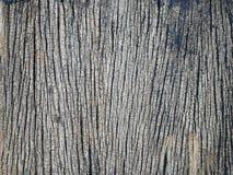 Vieille texture en bois fond pour le fond de vintage Photographie stock libre de droits