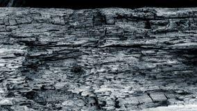 Vieille texture en bois noire et blanche Photographie stock