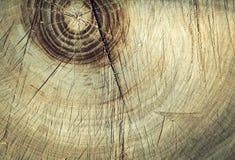 Vieille texture en bois panneaux de fond pour la conception Photo libre de droits