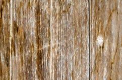 vieille texture en bois superficielle par les agents de planches Images libres de droits