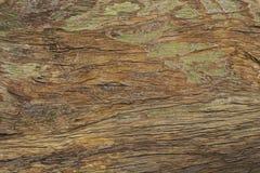 Vieille texture extérieure en bois sale Photo brune chaude de macro de texture de bois de construction Fond en bois normal image stock