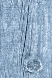 Vieille texture grunge bleue en bois nouée de fond Photographie stock libre de droits