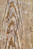 Vieille texture grunge en bois nouée de fond Images libres de droits