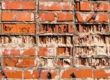 Vieille texture rouge de mur de briques Photo libre de droits