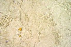 Vieille texture sale de mur photos stock