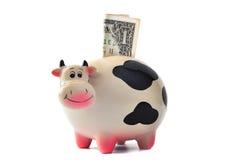 Vieille tirelire Vache avec 1 dollar sur un fond blanc image libre de droits