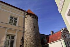 Vieille tour avec le toit rouge à Tallinn, Estonie Photographie stock