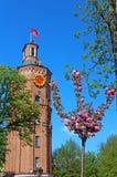 Vieille tour de feu avec l'horloge (1911) et l'arbre de Sakura, Vinnytsia, Ukraine Images stock