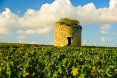 Vieille tour médiévale ruinée dans la vigne dans Medoc Images libres de droits