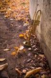 Vieille trompette Autumn Leaves Photo libre de droits