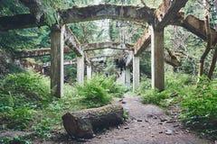 vieille usine abandonnée photo libre de droits