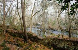 Vieille usine de rivière de Saluda et x22 ; Le Remains& x22 ; Photos libres de droits