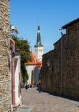 Vieille ville à Tallinn Photo libre de droits