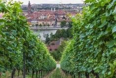 Vieille ville de Wurtzbourg, un site de patrimoine mondial de l'UNESCO photo stock