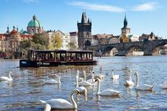 Vieille ville, rivière de Vltava, Prague (l'UNESCO), République Tchèque Image libre de droits