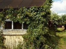 vieille voie de village d'été de buisson de vert de fenêtre de maison images stock