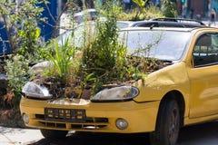 Vieille voiture avec des usines dans le moteur image stock