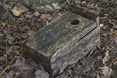 Vieille volière en bois s'étendant au sol dans les bois Photo stock