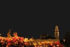 Vieille vue de ville de Jérusalem Images stock