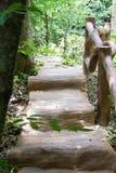 Vieilles étapes en bois amenant Image stock