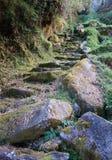 Vieilles étapes en pierre image stock