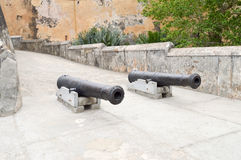 Vieilles armes à feu de fonte devant l'entrée Photo stock