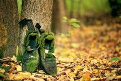 Vieilles bottes de vintage dans des feuilles d'autmn Image libre de droits