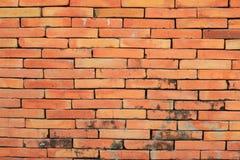 Vieilles briques de couleur rouge de mur Image stock
