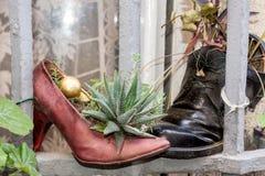 Vieilles chaussures comme le pot de fleur, Marseille photo stock