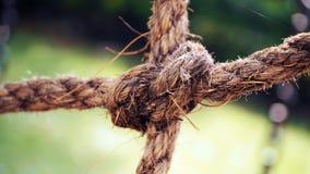 Vieilles cordes de bateau avec le noeud photo stock