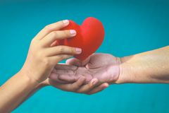 Vieilles et jeunes mains tenant le coeur rouge images libres de droits