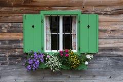 Vieilles fenêtres avec des barres Photo libre de droits