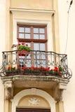 Vieilles fenêtres de décoration architecturale, style de vintage, un élément protecteur des fenêtres, détail intéressant Photo stock