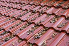 Vieilles feuilles sur le toit photographie stock