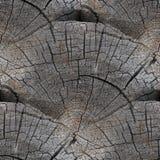 Vieilles fissures en bois de fond sans joint de texture Images stock
