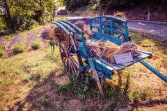 Vieilles fleurs de chariot et de lavande en Provence Photographie stock libre de droits