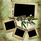 Vieilles glissières pour la photo avec le bouquet de saule illustration libre de droits