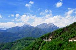 Vieilles hautes montagnes couvertes de forêts Photos stock