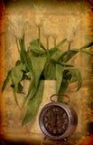 Vieilles horloge et tulipes Photographie stock libre de droits
