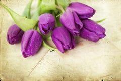 Vieilles lettres d'amour et tulipes pourpres Photographie stock