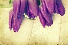 Vieilles lettres d'amour et tulipes pourpres Image libre de droits