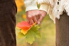 Vieilles mains de fixation de couples Image stock