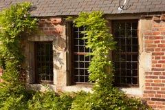 Vieilles maisons historiques photo libre de droits