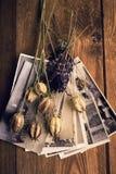Vieilles photographies, un appareil-photo et fleurs sèches Photographie stock
