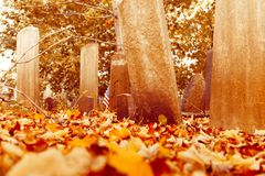 Vieilles pierres tombales dans le cimetière Photographie stock