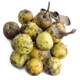 Vieilles pommes sur le blanc Photos libres de droits